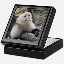 Capuchin Monkey Keepsake Box