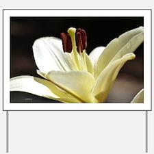Beautiful White Regal Lily Yard Sign