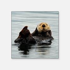 "RCoaster_Otter_5 Square Sticker 3"" x 3"""