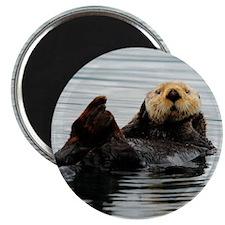 RCoaster_Otter_5 Magnet