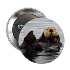 "RCoaster_Otter_5 2.25"" Button"