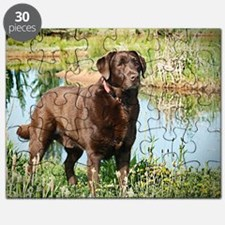 Chocolate Labrador Ready for the Hunt Puzzle