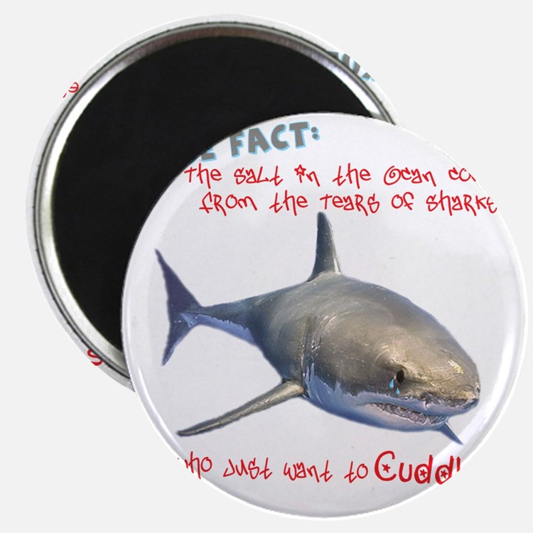 Shark Tears Magnet