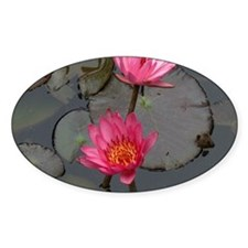 Lillies Decal