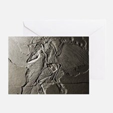 Archaeopteryx Greeting Card