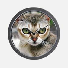 Singapura Cat Wall Clock