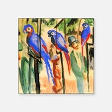 """Marc Franz With The Parrots Square Sticker 3"""" x 3"""""""