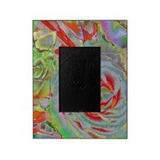 CorrectPropRoses1b16 Picture Frame