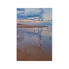 Ocean Birds at Sunrise Rectangle Magnet