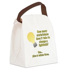 statistician lightbulb joke Canvas Lunch Bag
