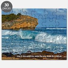 Shipwreck Beach Shorebreaks Puzzle