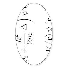 Schrodinger equation, delta, white, Decal