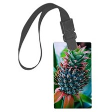 Colors of pineapples Luggage Tag