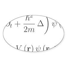 Schrodinger equation, delta, black Decal