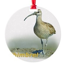 Heroic Whimbrel Ornament