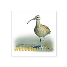 "Heroic Whimbrel Square Sticker 3"" x 3"""