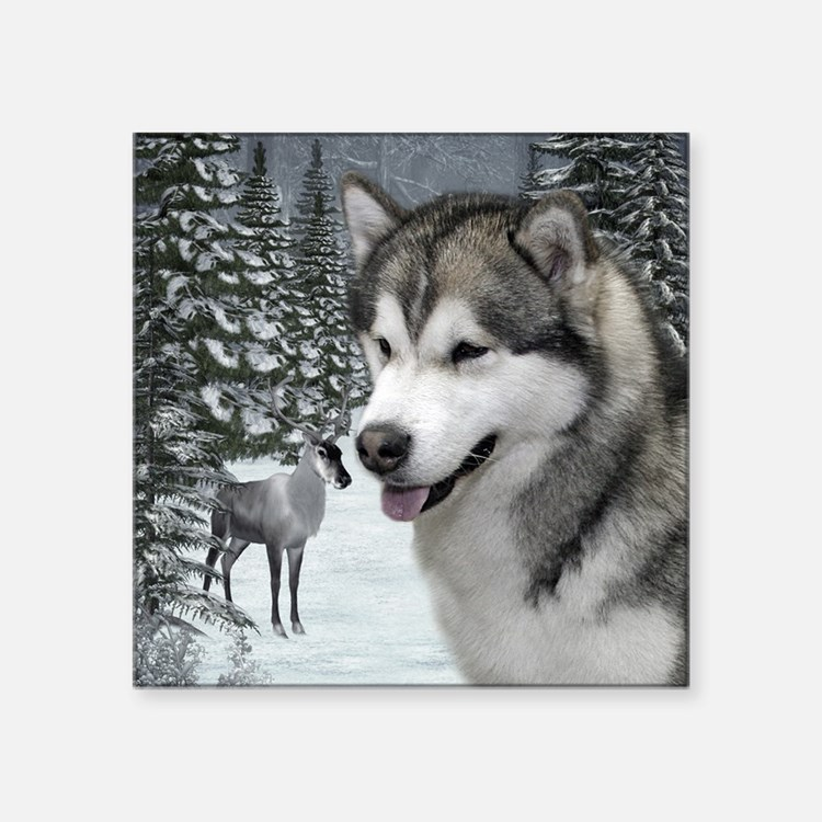 "Malamute Square Sticker 3"" x 3"""