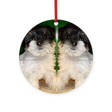 Chorkie puppie Round Ornament