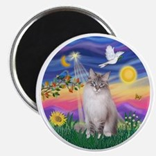Twilight - Ragdoll (Lilac Bi Color Lynx) Magnet