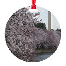 Peal bloom cherry blossom frames Wa Ornament