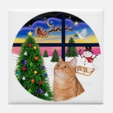 X Window - Orange Tabby 46 Tile Coaster