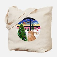 X Window - Orange Tabby 46 Tote Bag