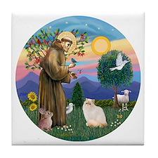 St Francis - Himalayan (Flame Pt) Tile Coaster