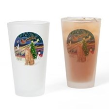 X Magic - Orange Tabby 46 Drinking Glass