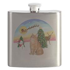 Take Off - Orange Tabby cat Flask