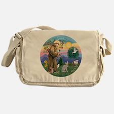 St Francis - Peterbald cat Messenger Bag
