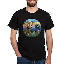 St Francis - Peterbald cat T-Shirt