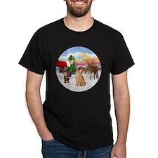 Treat for an Orange Tabby Cat. T-Shirt