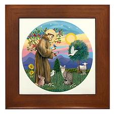 St Francis - Tabby   White Cat Framed Tile