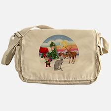 Treat for a Peterbald cat. Messenger Bag