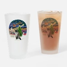 XMagic-SnowShoeCat1 Drinking Glass