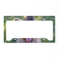 Summer Cairn Terrier License Plate Holder