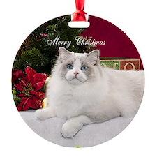Ragdoll Cat Snowflake Ornament Ornament