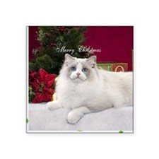 "Ragdoll Cat Snowflake Ornam Square Sticker 3"" x 3"""