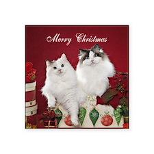 "Ragdoll Cat Coaster Square Sticker 3"" x 3"""