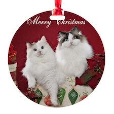 Ragdoll Cat Coaster Ornament