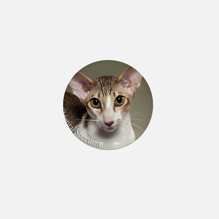 Oriental Shorthair Cat ornament Mini Button