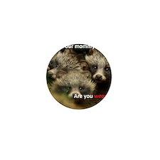 Anti-Fur Raccoon Dog pups Mini Button