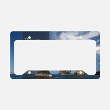 Stupid Quotes- Ice Cream Card License Plate Holder