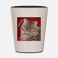Selkirk Rex Kitten Ornament Shot Glass