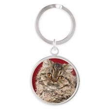 Selkirk Rex Kitten Ornament Round Keychain