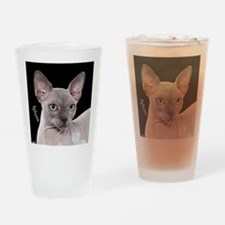 Sphynx Cat Ornament Drinking Glass