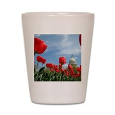 US Capitol Building Surrounded by Sprin Shot Glass
