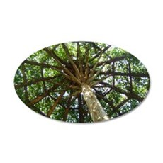 Amazing Tree  35x21 Oval Wall Decal
