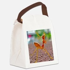 Foot! Canvas Lunch Bag