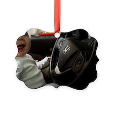 Milo Driving Ornament